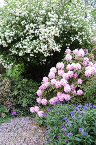 Jardinier propose montigny le bretonneux 78180 tous for Prix jardinier heure
